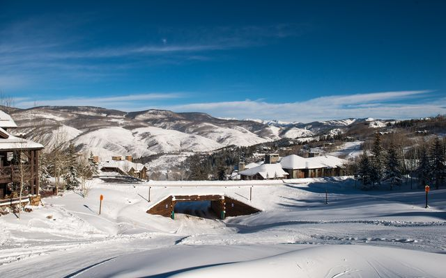 Bachelor Gulch Homes for Sale