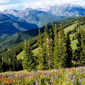 Photo of Vail - Click Here