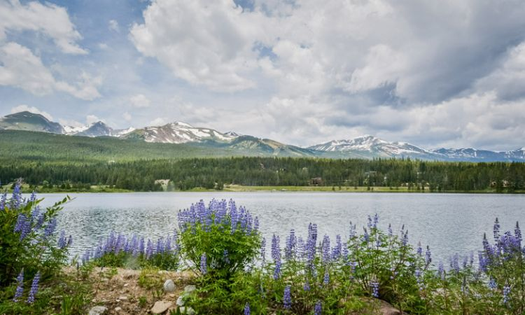 Breckenridge-Blue River Real Estate