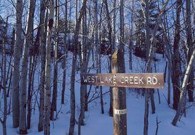 Lake Creek Real Estate
