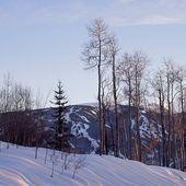 Photo of Mountain Star