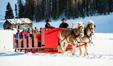 Sleigh Ride Dinner