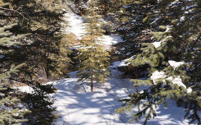 333 Beaver Dam Road - photo 77