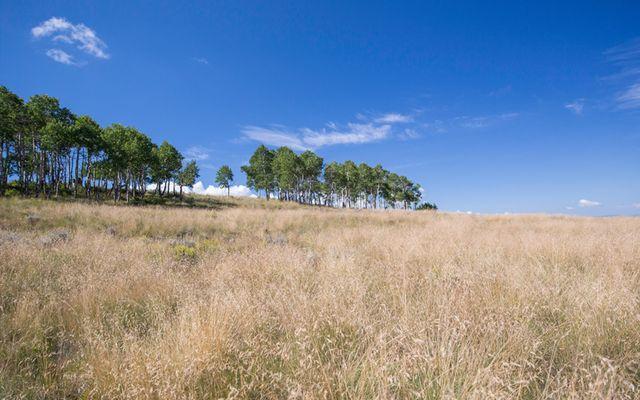 64 Pine Marten Way - photo 5