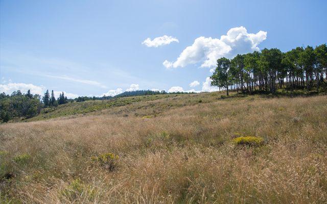 64 Pine Marten Way - photo 8