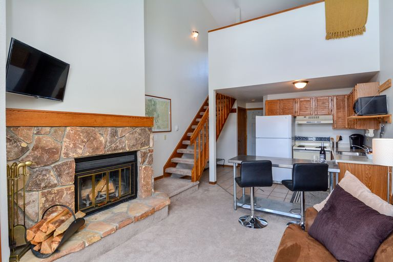 10000 Ryan Gulch ROAD # 203 SILVERTHORNE, Colorado 80498