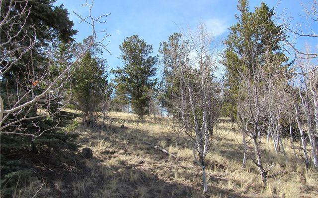530 GITCHE GOONE LANE COMO, Colorado 80432