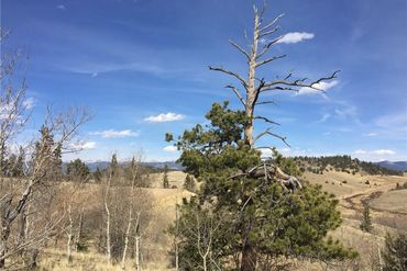 530 GITCHE GOONE LANE COMO, Colorado - Image 17