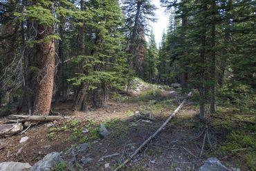 Photo of 280 Quandary View DRIVE BRECKENRIDGE, Colorado 80424 - Image 28