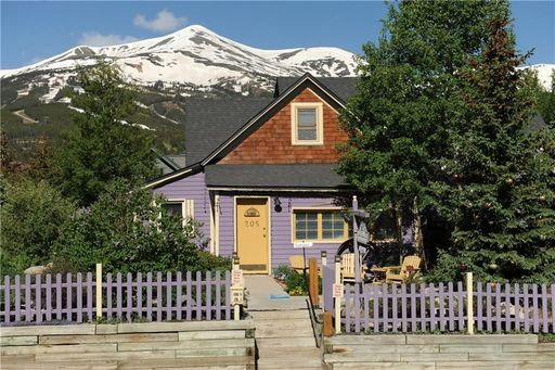 205 S French BRECKENRIDGE, Colorado 80424 - Image 4