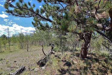 704 HAWK WAY COMO, Colorado - Image 5