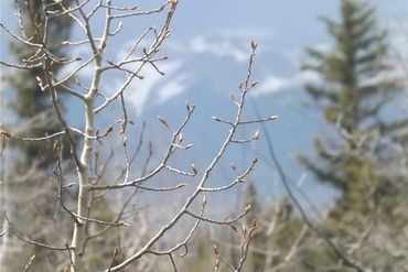 452 KODIAK ROAD COMO, Colorado - Image 12