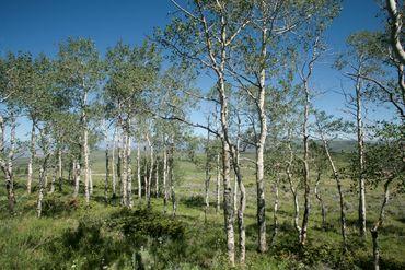 92 Pine Marten Edwards, CO - Image 12