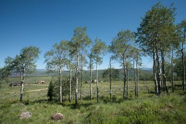 92 Pine Marten Edwards, CO - Image 7