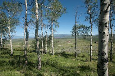 92 Pine Marten Edwards, CO - Image 8
