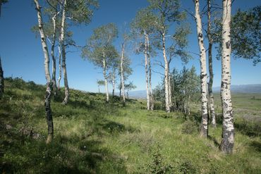 Photo of 92 Pine Marten Edwards, CO 81632 - Image 9