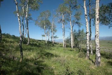 92 Pine Marten Edwards, CO - Image 9