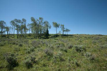 92 Pine Marten Edwards, CO - Image 10