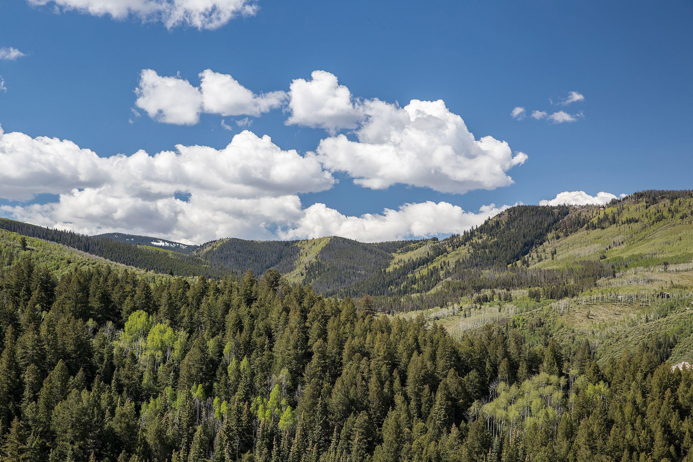 1335 Cordillera Way Edwards, CO 81632