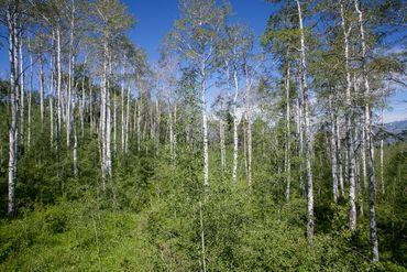 907 Webb Peak Edwards, CO - Image 5