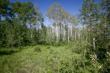 907 Webb Peak Edwards, CO - Image 7