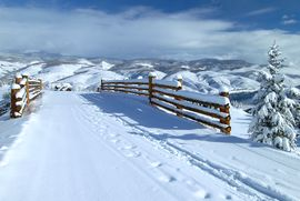 50 Peak View # 310 Avon, CO 81620 - Image
