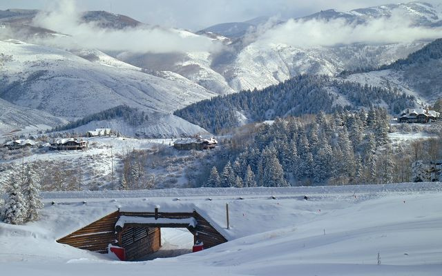 Horizon Pass Residences # 310 - photo 17