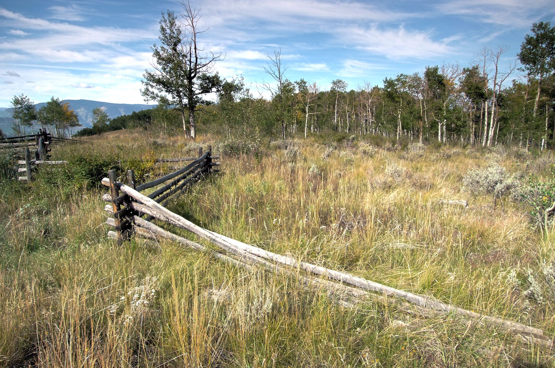 624 Gore Trail Edwards, CO 81632
