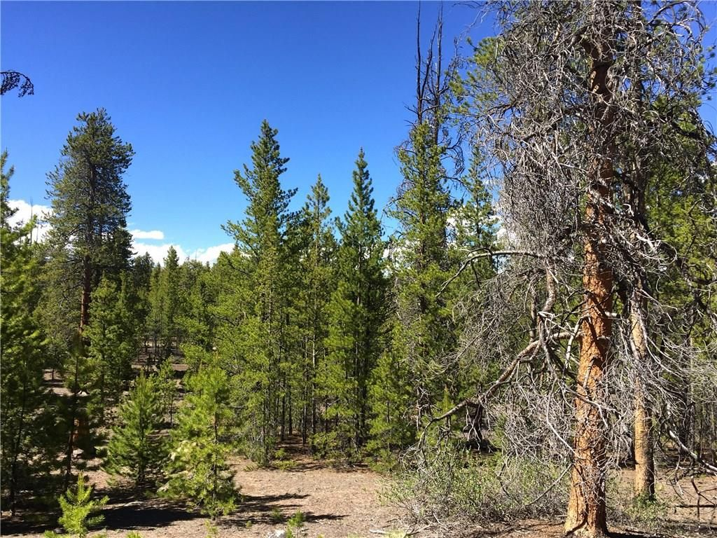 379 Hemlock TWIN LAKES, Colorado 81251