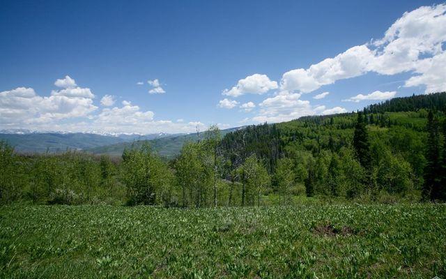 904 Granite Springs Trail - photo 10