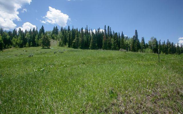904 Granite Springs Trail - photo 2