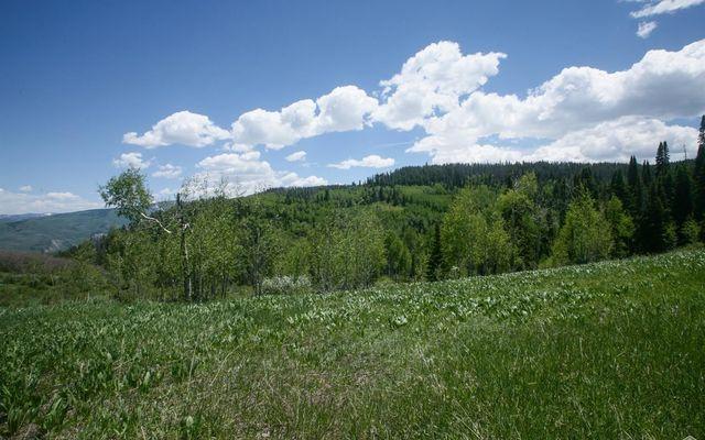 904 Granite Springs Trail - photo 6