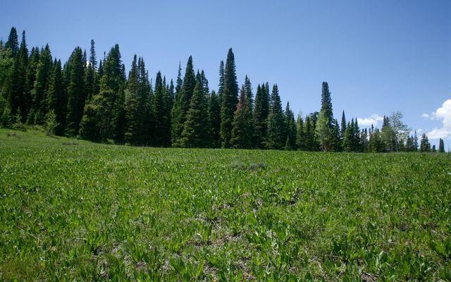 904 Granite Springs Trail - photo 7