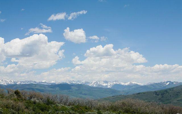 904 Granite Springs Trail - photo 8