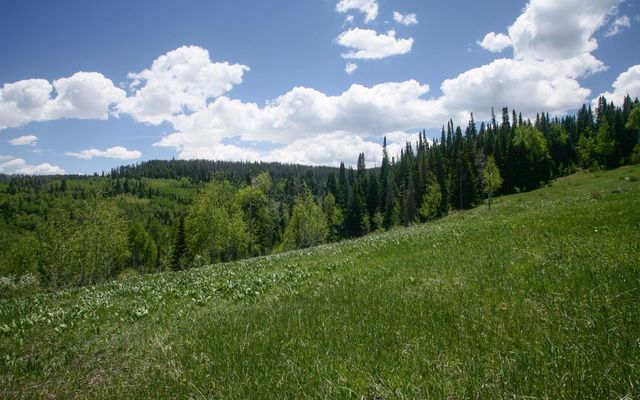 904 Granite Springs Trail - photo 9