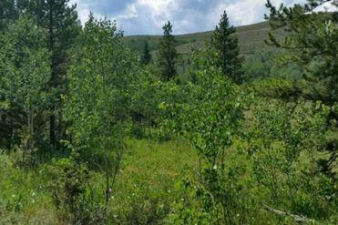 2413 GCR 88 GRANBY, Colorado 80446 - Image 1