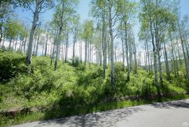 166 East Timber Draw Edwards, CO 81632 - Image