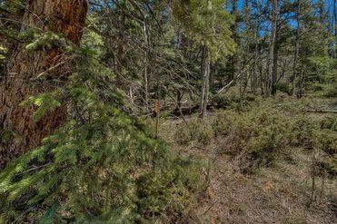 107 Angler Mountain Ranch ROAD SILVERTHORNE, Colorado 80498 - Image 1