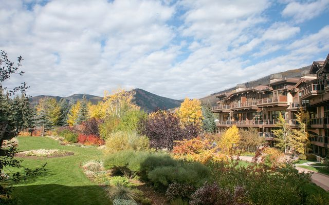 Manor Vail # 262d - photo 3