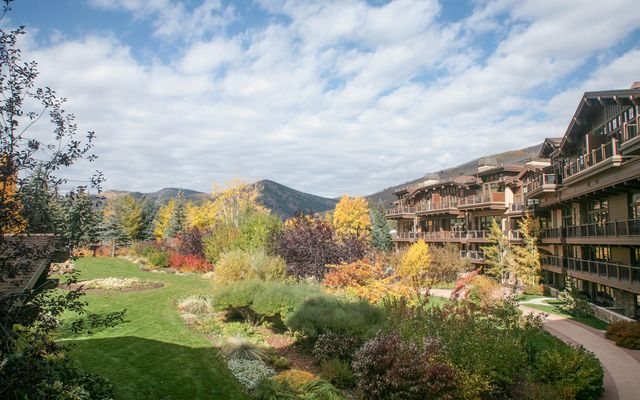 595 E Vail Valley Drive # 262d - photo 9