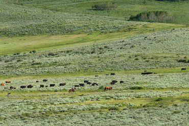Photo of 1690 Derby Mesa Loop Burns, CO 80426 - Image 11