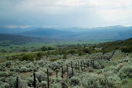 1690 Derby Mesa Loop Burns, CO 80426 - Image 20