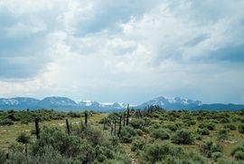 1690 Derby Mesa Loop Burns, CO 80426 - Image 24