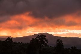 1690 Derby Mesa Loop Burns, CO 80426 - Image 28