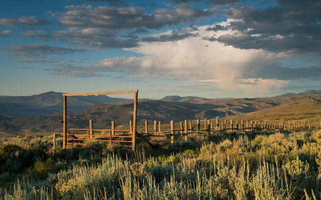 1690 Derby Mesa Loop - photo 30
