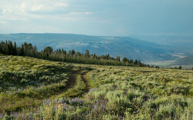 1690 Derby Mesa Loop - photo 31