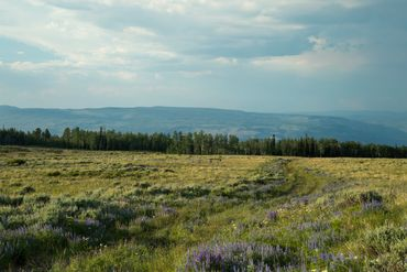 Photo of 1690 Derby Mesa Loop Burns, CO 80426 - Image 34
