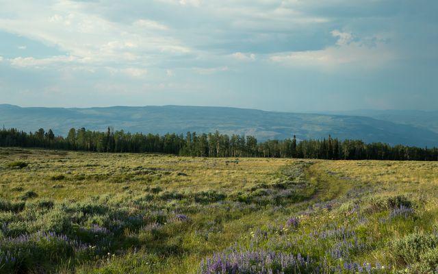 1690 Derby Mesa Loop - photo 33