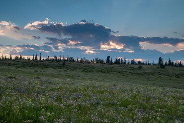 Photo of 1690 Derby Mesa Loop Burns, CO 80426 - Image 36