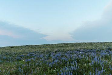 Photo of 1690 Derby Mesa Loop Burns, CO 80426 - Image 40